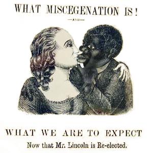 Image result for Miscegenation
